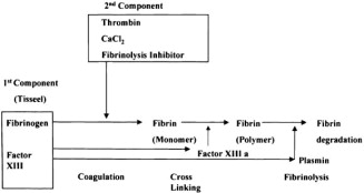 Safety and efficacy of currently available fibrin tissue