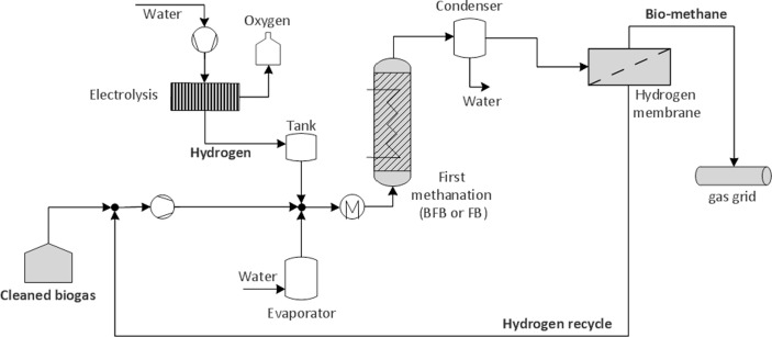 Direct catalytic methanation of biogas – Part I: New insights into ...