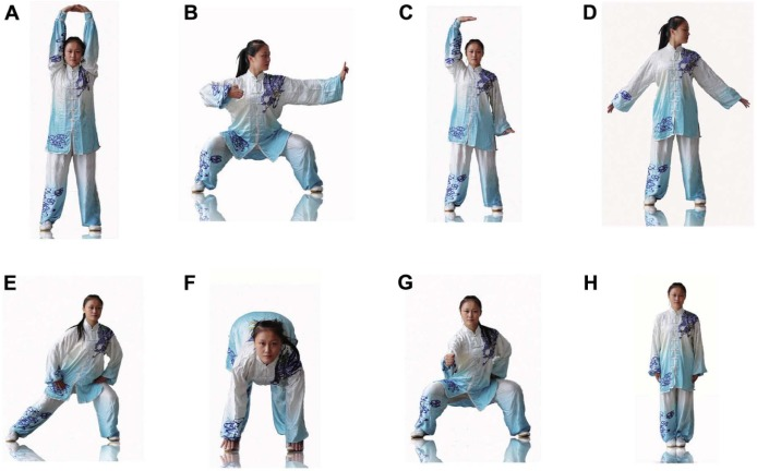 Physical and psychological effects of Qigong exercise in