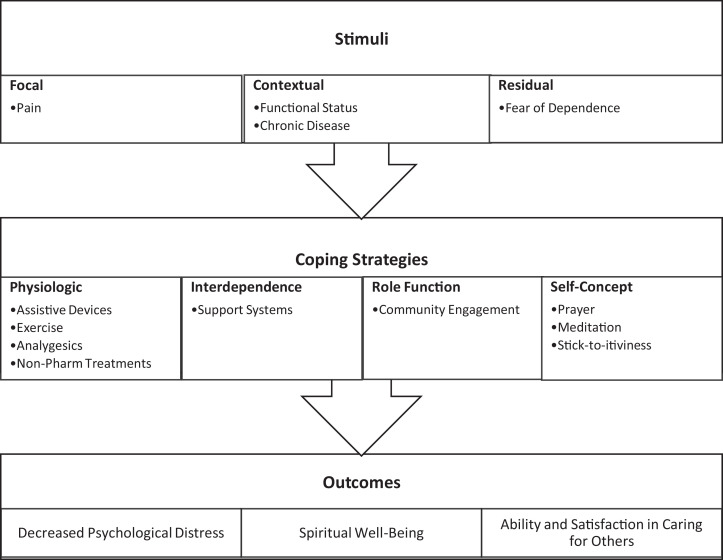 Adapting to chronic pain: A focused ethnography of black