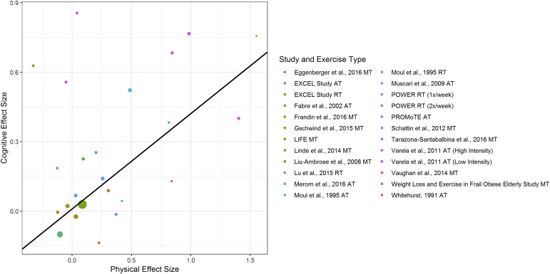 Executive Function Not Panacea For >> Impact Of Exercise Training On Physical And Cognitive