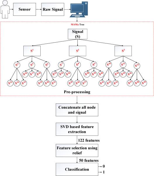 Automated detection of Parkinson's disease using minimum