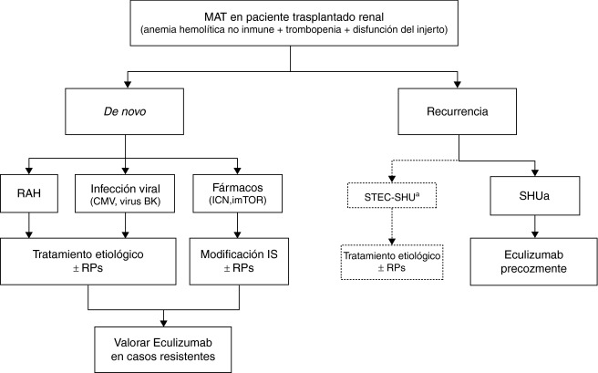 Sindrome Uremico Hemolitico Epub