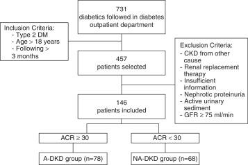 modelo precede diabetes