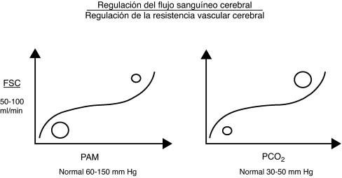 Hipertensión intracraneal presión arterial