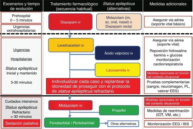 Guía Para El Manejo De Las Crisis Epilépticas En Cuidados Paliativos Propuesta De Un Modelo Actualizado De Práctica Clínica Basado En Una Revisión Sistemática De La Literatura Sciencedirect