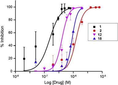 The human Aurora kinase inhibitor danusertib is a lead