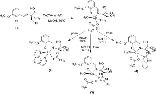 Mixed-ligand Cu(II)–vanillin Schiff base complexes