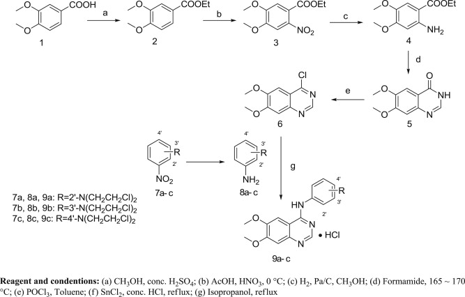 synthesis protocol of quinazoline nitrogen mustard derivatives 9ac