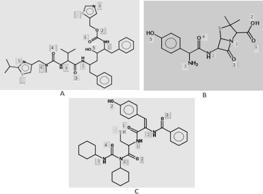 Synthesis and biological evaluation of N-dehydrodipeptidyl-N,N