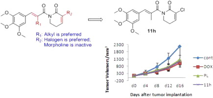Design synthesis and biological activity of piperlongumine