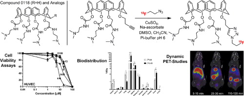 Novel analogs of antitumor agent calixarene 0118: Synthesis