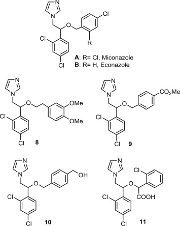 A facile synthesis of novel miconazole analogues and the