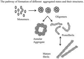 oligomer