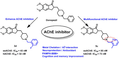 Could Modified Alzheimers Drug Treat >> Rational Modification Of Donepezil As Multifunctional