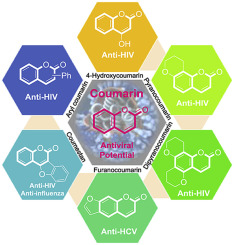 Therapeutic potential of coumarins as antiviral agents - ScienceDirect