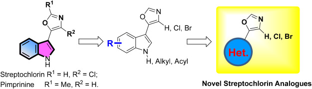 Synthesis and antifungal activity of novel indole-replaced