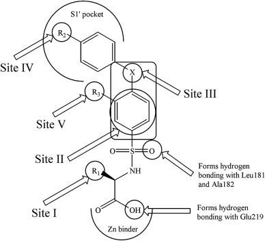 Arylsulfonamides And Selectivity Of Matrix Metalloproteinase 2 An