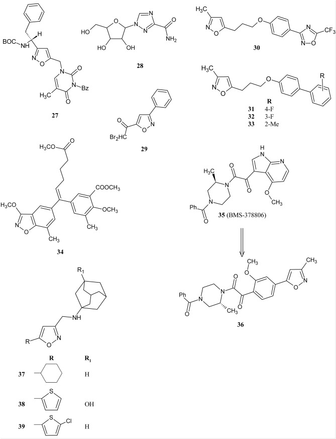 Isoxazole Ring As A Useful Scaffold In A Search For New Therapeutic