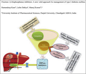 term paper on type 2 diabetes