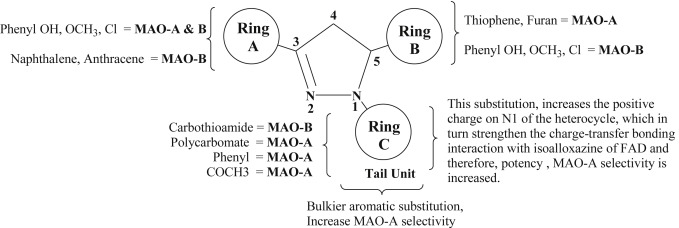Privileged scaffolds as MAO inhibitors Retrospect and prospects