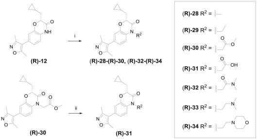 Benzoxazinone Containing 35 Dimethylisoxazole Derivatives As Bet