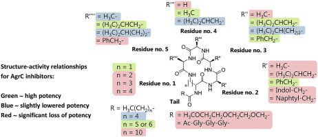 Lactam hybrid analogues of solonamide B and autoinducing peptides as