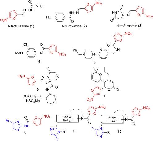 Conjugation of a 5-nitrofuran-2-oyl moiety to