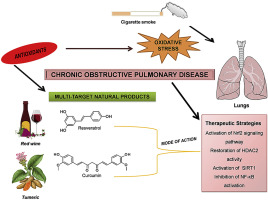Multi-target natural products as alternatives against oxidative