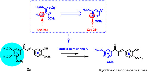 Design, synthesis and biological evaluation of pyridine-chalcone