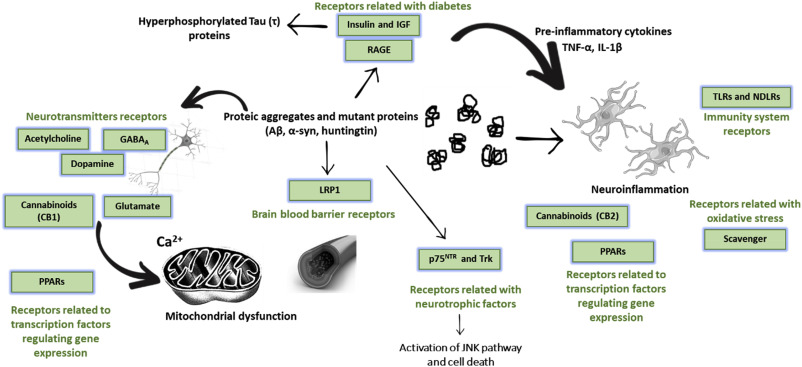 Comprehensive review on the interaction between natural