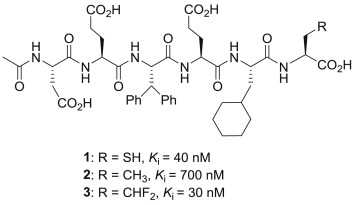 Applications of fluorine-containing amino acids for drug ... on