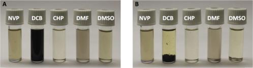 Recent advance in black phosphorus: Properties and