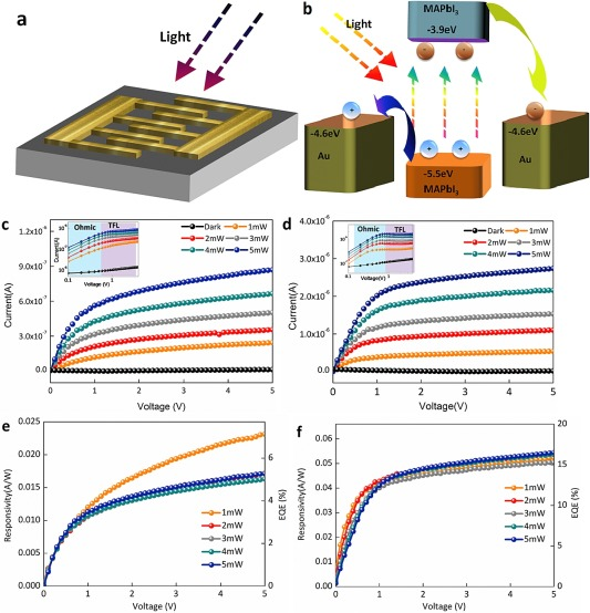2a37c78380 Anisotropic optoelectronic performances on (112) and (100) lattice ...