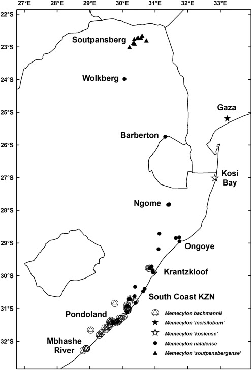 Phylogenetic Analysis Of East And Southern African Memecylon Section