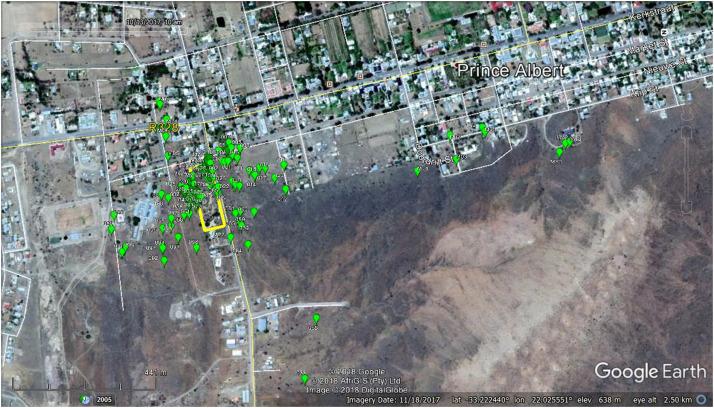 The dispersal and spread of invasive alien Myrtillocactus