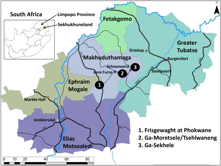 The ethnobotany of Central Sekhukhuneland, South Africa
