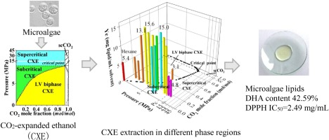 Evaluation Of Lipid Extraction From Microalgae Based On Different Phase Regions Of Co2 Expanded Ethanol Sciencedirect