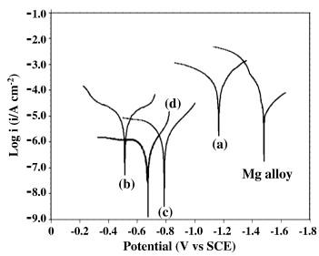 Autocatalytic duplex nipniwp coatings on az31b magnesium alloy potentiodynamic polarization curves obtained for a nip b duplex fandeluxe Gallery