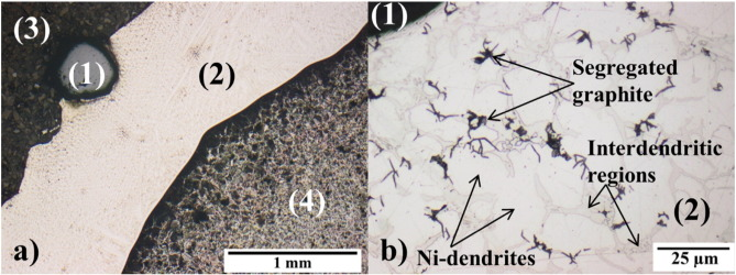 Laser Cladding of Diamond Tools: Interfacial Reactions of Diamond and Molten Metal