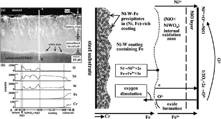 Ni-W electrodeposited coatings: Characterization, properties