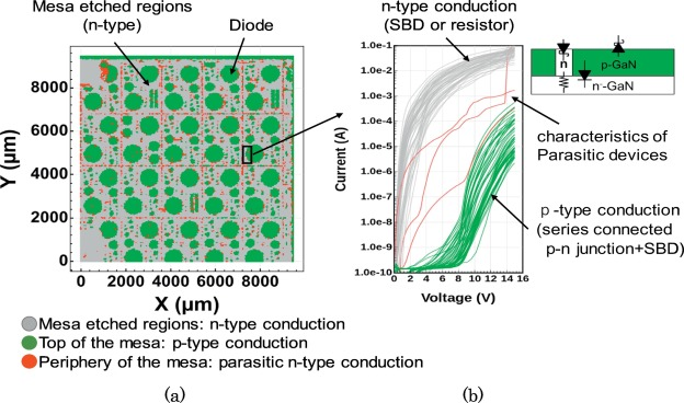Homogeneity evaluation of Mg implanted GaN layer by on-wafer