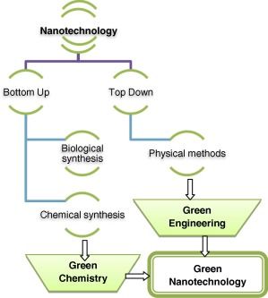 Value-adding to grape waste: Green synthesis of gold