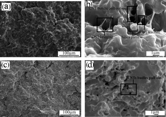 growth of carbon nanotubes on silica microparticles and their