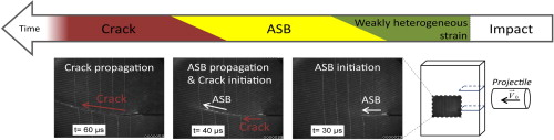 Roux et al., Analysis of ASB assisted failure in a high strength steel under high loading rate, Materials&Design
