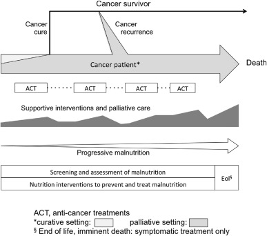 ESPEN guidelines on nutrition in cancer patients - ScienceDirect