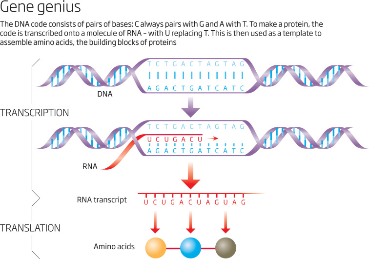 The hunt for dark dna sciencedirect download high res image 638kb malvernweather Choice Image