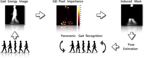 Feature subset selection applied to model-free gait
