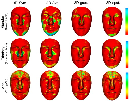 Joint gender, ethnicity and age estimation from 3D faces: An