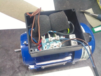 Diagnostics of stator faults of the single-phase induction motor ...